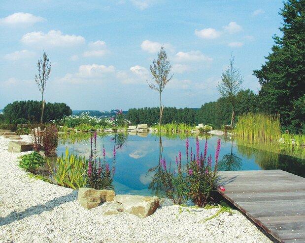 Natürliches Badeerlebnis im eigenen Garten